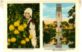 Citrus Postcards071.012b