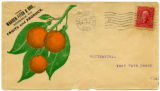 Citrus Postcards001a
